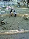 080317 フラワー公園の砂場で。