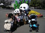 080401 上野動物園