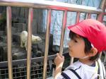 080515 ユウヤ遠足 上野動物園