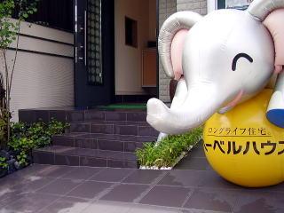ゾウ君のお出迎え