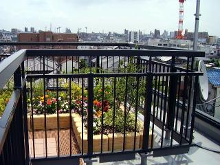 屋上の花壇