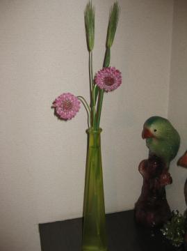 花麦とスカビオサ