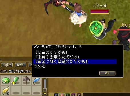 ss20080317-03.jpg
