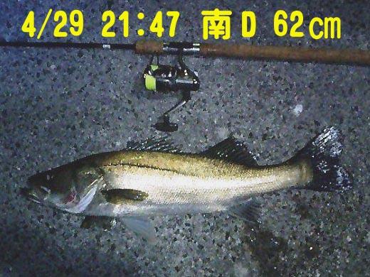 CA280161-2-62.jpg