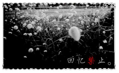 Xie3.png