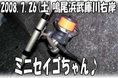 今日の釣果♪(T▽T*)