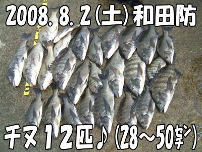 今日の釣果♪O(≧∇≦)O♪