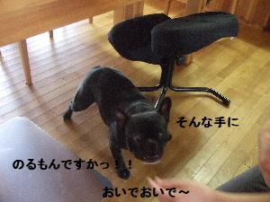 2008_0614(008).jpg