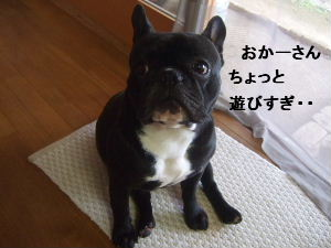 2008_0624(005).jpg