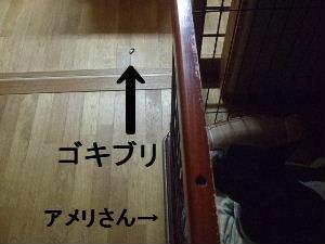 2008_0703(001).jpg