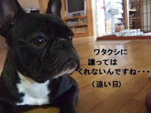 2008_0708(006).jpg