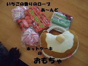 2008_0727(008).jpg