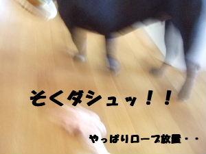 2008_0727(012).jpg
