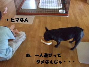 2008_0727(013).jpg