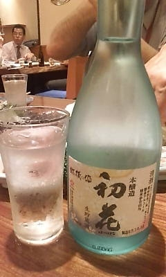 hatsuhana0423.jpg