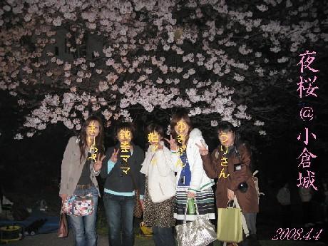 夜桜集合写真