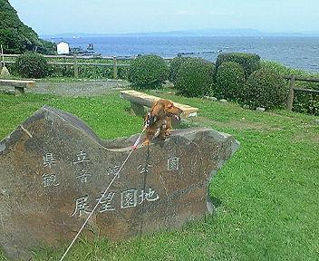 kannonzaki6.jpg