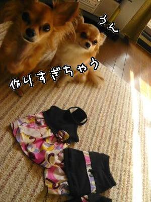 2008-05-07-03.jpg