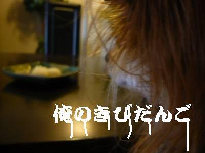 2008-05-08-17.jpg