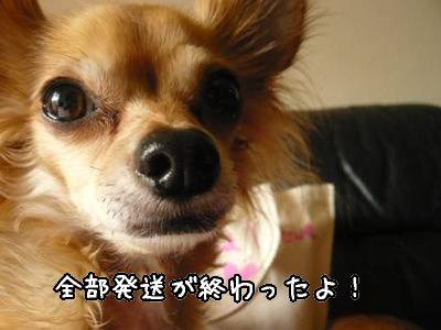 2008-05-23-01.jpg