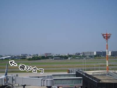 2008-05-27-05.jpg