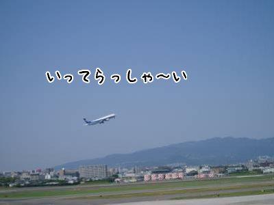 2008-05-27-07.jpg