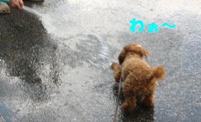 水が・・・