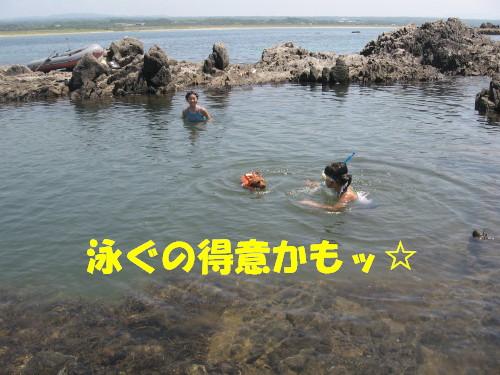 泳ぐの得意かも★