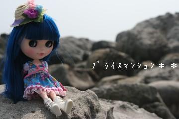 IMG_4941ss.jpg