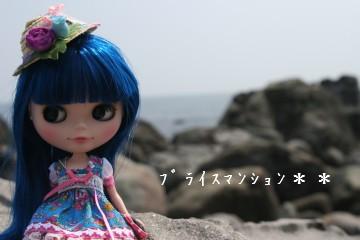 IMG_4942ss.jpg