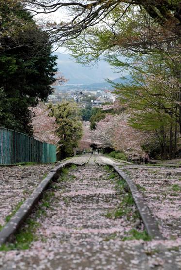 kyoto04.jpg