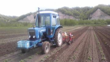 初夏のガンケとジャガイモ畑