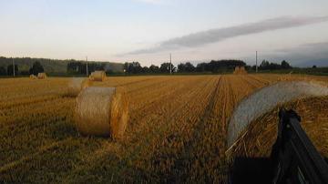小麦ロール集積