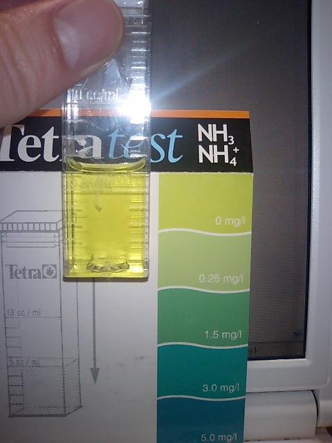 水質検査2