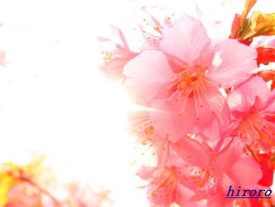 2008.04,21代々木(2008.03)