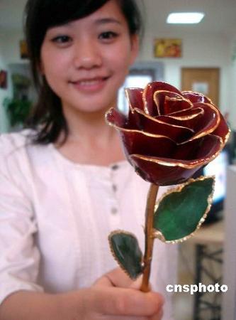 080803_金メッキの薔薇