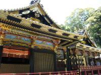 200803静岡17