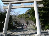 200803静岡20