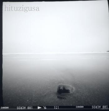 2008ピンホール海