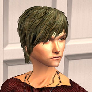K-20080729-brown.jpg