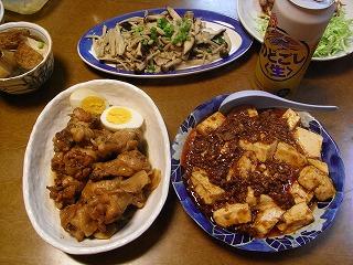 3月28日 鶏のすっぱ煮&麻婆豆腐