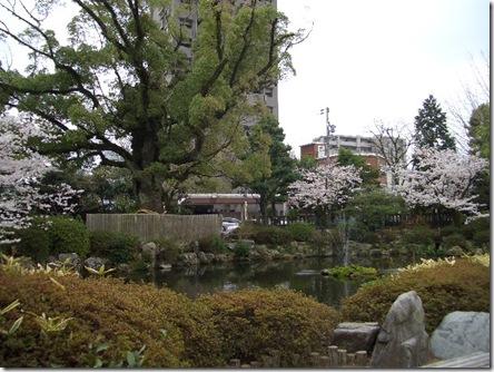 静岡浅間神社】今週のおせんげんさん