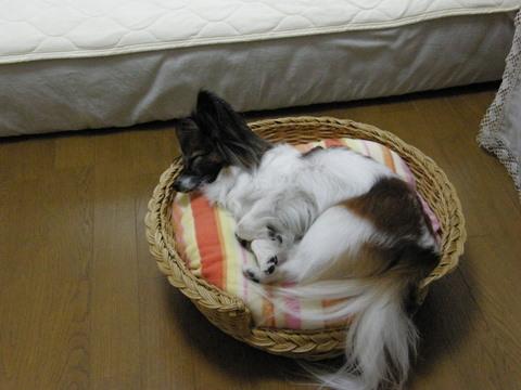 病院後の寝顔1