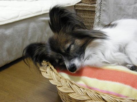 病院後の寝顔3