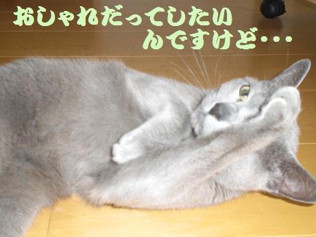 aliceおしゃれ
