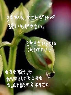 file1627191.jpg