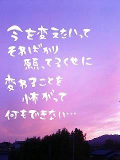 file2176181.jpg