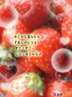 file3267465.jpg