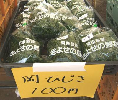 清瀬ひまわり野菜その4