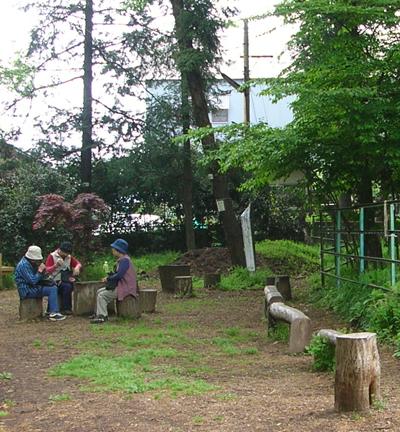清瀬市立せせらぎ公園の自然木の椅子